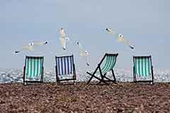 Summer Bank Holiday